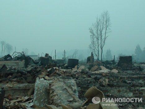Деревня Криуши Клепиковского района Рязанской области
