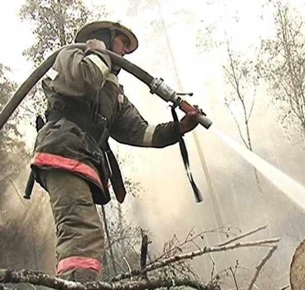 Семь лесных пожаров одновременно полыхают в Ногинском районе Подмосковья