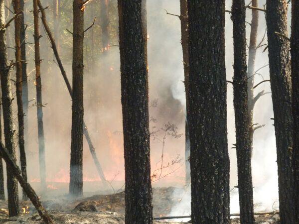 Тушение пожаров в Ульяновской области