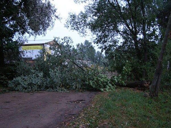 Последствия урагана в Новгородской области. Город Пестово
