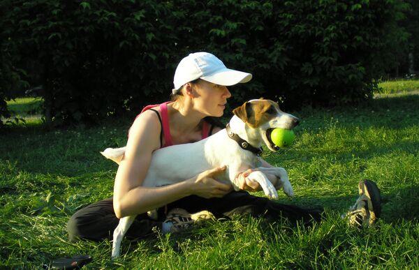 Занятия йогой вместе с собаками