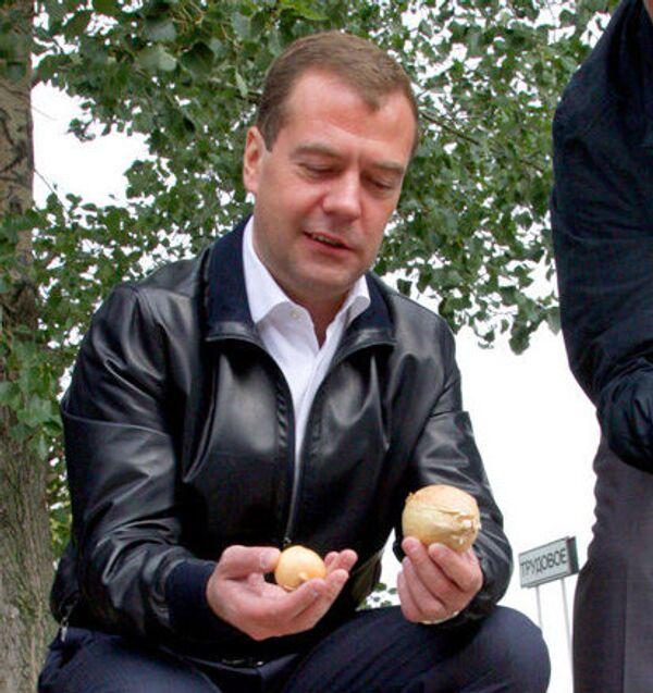 Медведев предложил отрубать руки неграмотным землепользователям