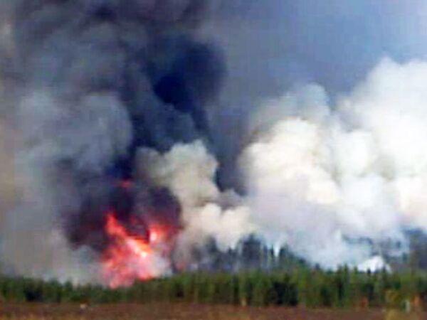 Несколько гектаров леса горит в Ульяновской области