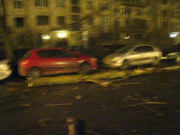 Ураганный ветер в Санкт-Петербурге валил деревья
