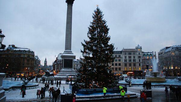 Предрождественский Лондон: зеленые лужайки и снежные заносы