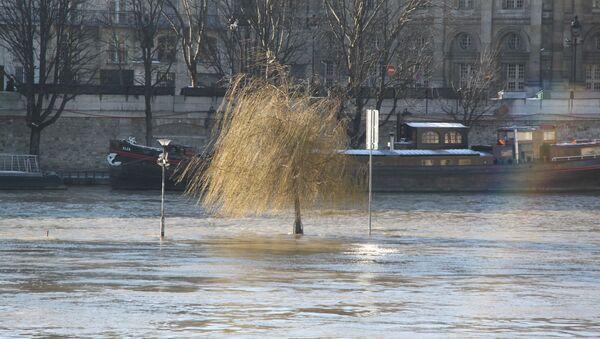 Набережная Сены в Париже. Архивное фото