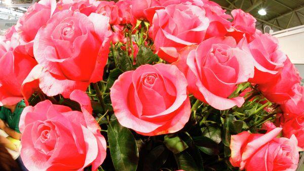 XV Международная выставка цветов, растений, оборудования и материалов для декоративного садоводства и цветочного бизнеса «Цветы-2008»