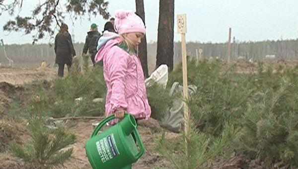Добровольцы посадили 110 тысяч заговоренных деревьев в Подмосковье
