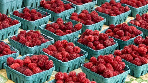 Продажа ягод