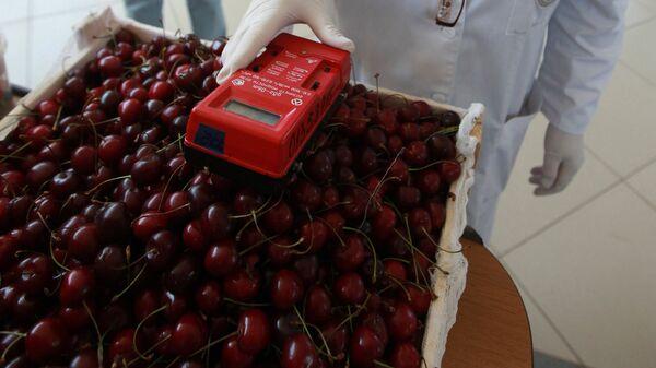 Работа лаборатории ветеринарно-санитарной экспертизы на Черемушкинском рынке