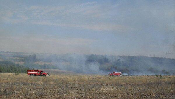 Лесной пожар в Волгоградской области