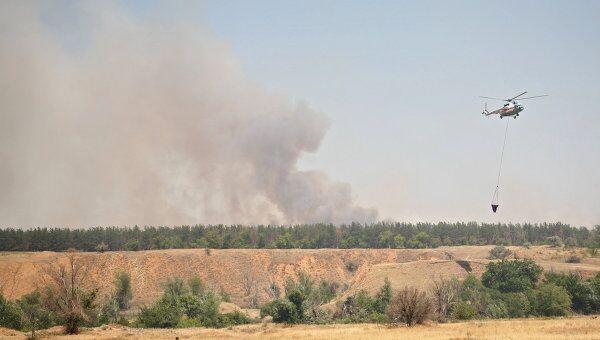 Тушение лесных пожаров в Волгоградской области