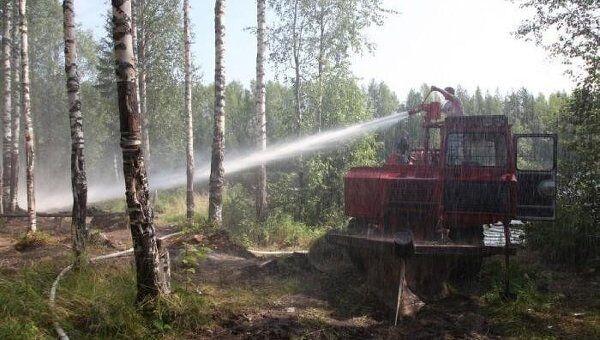Тушение лесного пожара в Холмогорском районе Архангельской области