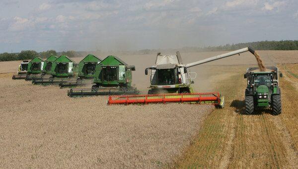 Уборка пшеницы. Архив