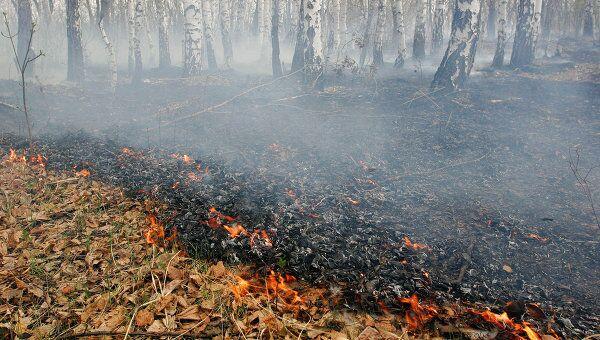 Сразу двенадцать частных домов горят в Костромской области - МЧС