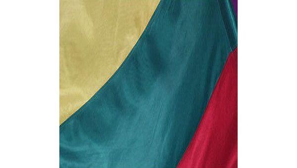 Флаг Литвы. Архивное фото