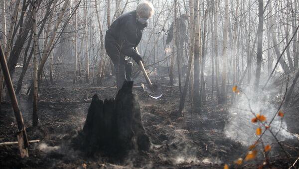 Добровольцы работают на месте пожаров в лесной зоне. Архивное фото