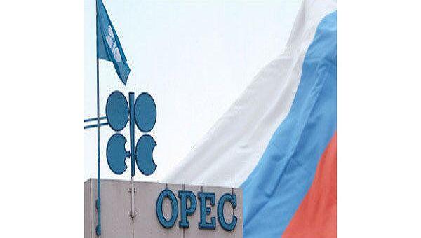 Россия активно развивает сотрудничество со странами ОПЕК на двусторонней основе