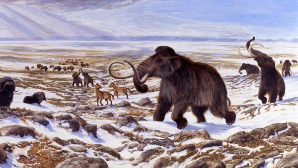 Фауна ледникового периода