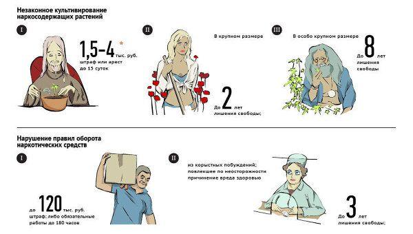 Юридическая ответственность за наркопреступления в России
