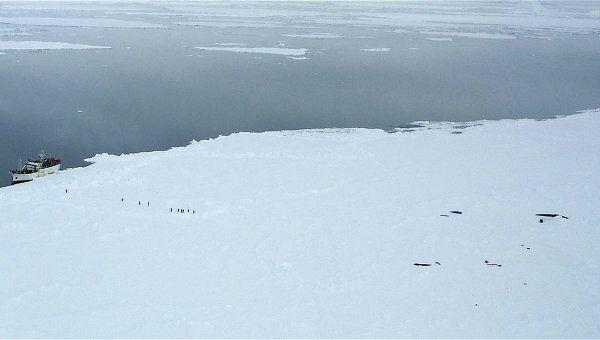 Российский траулер Спарта, пришвартованный у берегов Антарктиды