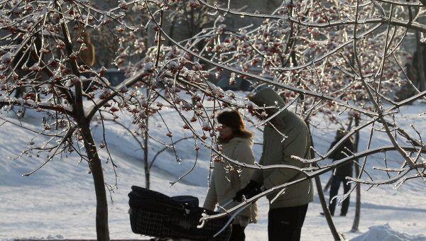 Зимний отдых москвичей