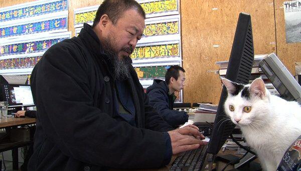 Ай Вэйвэй: никогда не извиняйся (Ai Weiwei: Never Sorry)