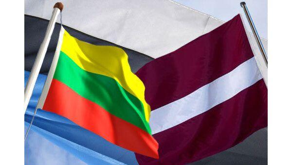 Страны Балтии справятся с кризисом за полгода, уверена президент Литвы