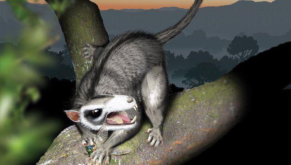 Древнее млекопитающее из отряда Многобугорчатых на охоте
