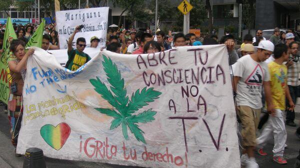 Легализация марихуаны в мексике конопля сколько стоит марихуана