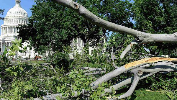 Последствия шторма в Вашингтоне