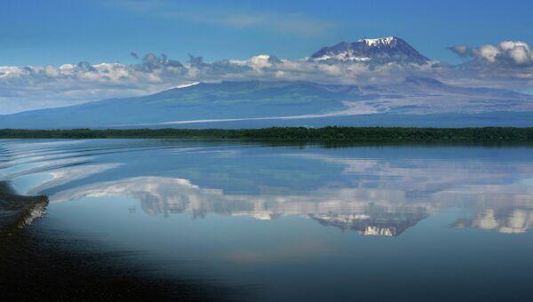 Вид на вулкан Шивелуч с берега реки Камчатка в Камчатском крае. Архивное фото