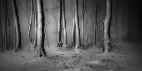 Veselin Atanasov. ТОП-101 конкурса The International Landscape Photographer of the Year 2019