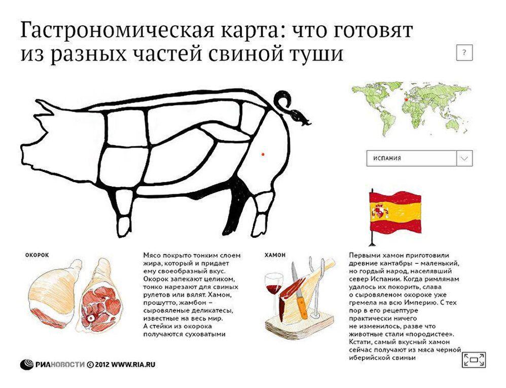 Гастрономическая карта: что готовят из разных частей свиной туши