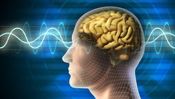 Работа мозга. рхив