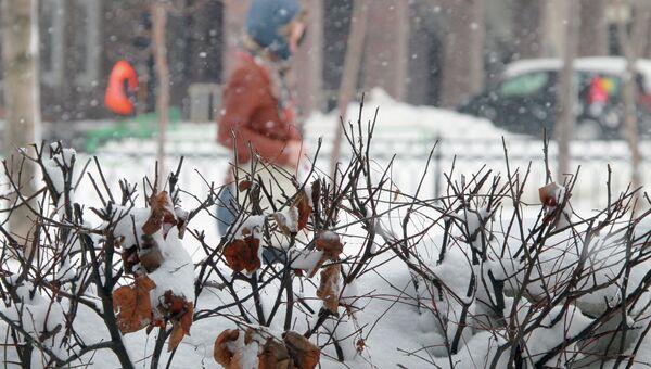 Cнегопад. Архив