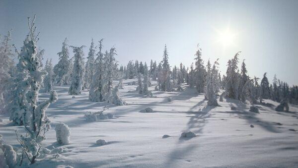 Зима в Якутии. Архивное фото