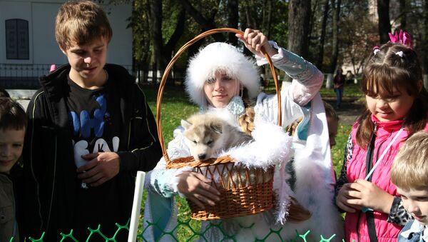 Костромская Снегурочка и щенок хаски. Архив