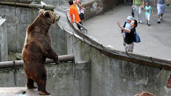 Посетители у вольера с бурым медведем в Калининградском зоопарке. Архивное фото