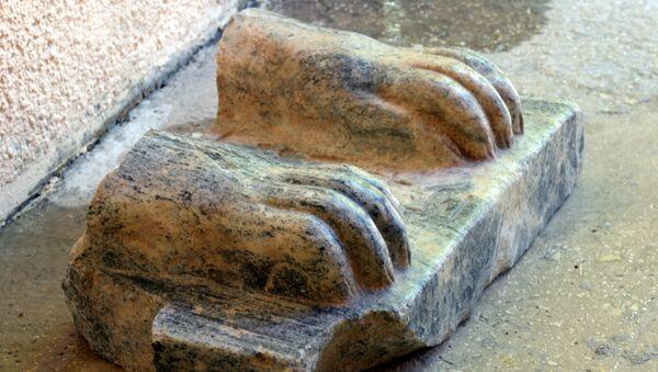Фрагмент древнеегипетского сфинкса, найденный в Израиле