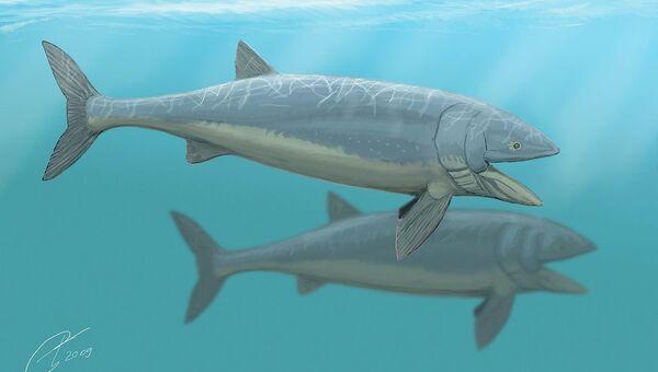 Художественное изображение рыбы лидсихтис