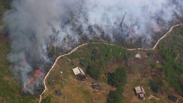 Лесные пожары вторую неделю бушуют в Ямало-Ненецком округе из-за жары