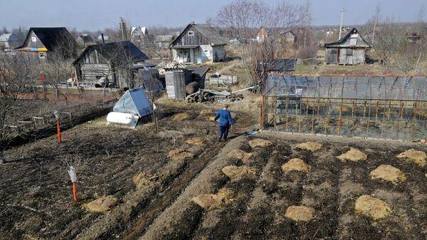 Жители работают на своих садово-огородных участках
