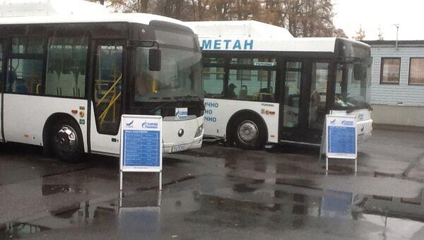 Новые автобусы на газу для Петербурга