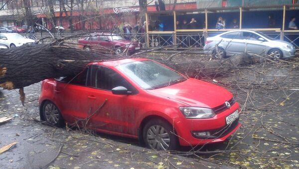 Последствия шторма Святой Иуда в Петербурге. Событийное фото