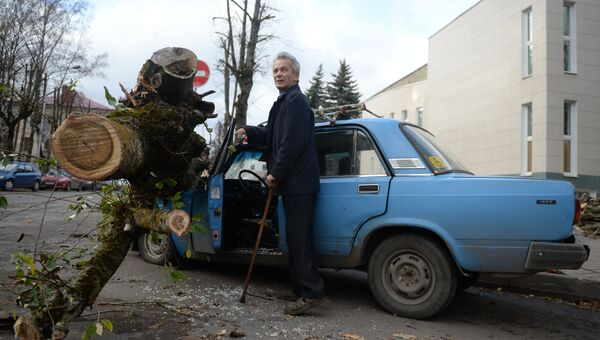 Последствия урагана Святой Иуда в Великом Новгороде. Архивное фото