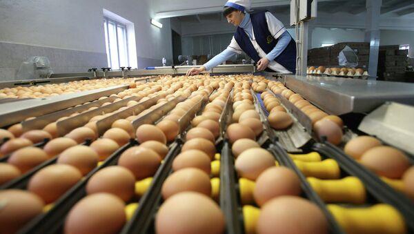 Сортировка куриных яиц. Архивное фото