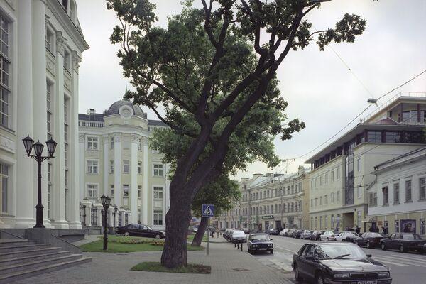 Москва сегодня, улица, Остоженка