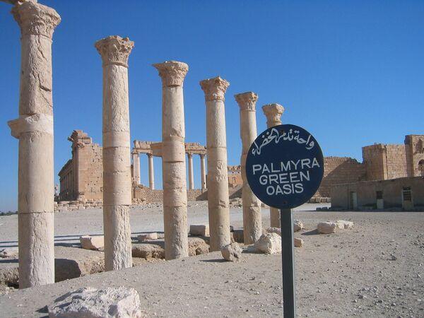 Развалины древнего города Пальмира