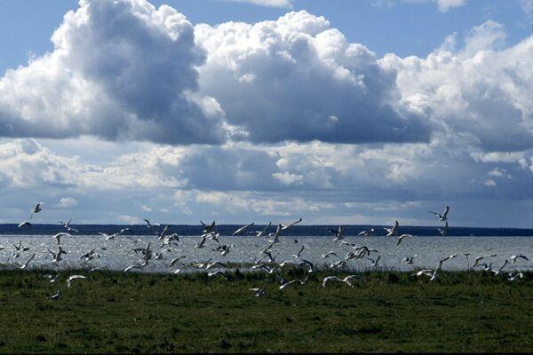 Плещеево озеро близ города Переславля-Залесского